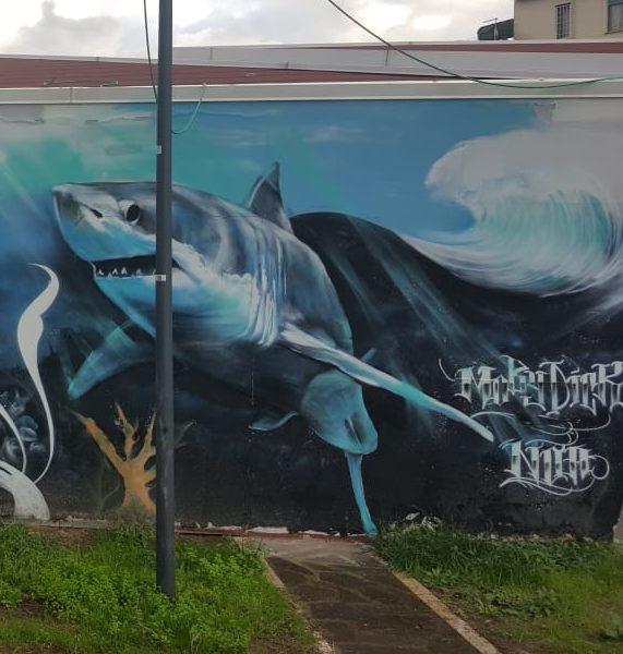 Nettuno e gli squali